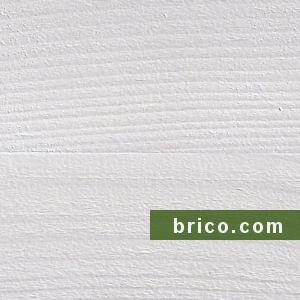 Sayerlack Renove Blanco